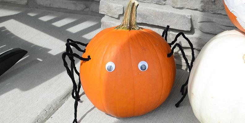 Spindelpumpa - halloween